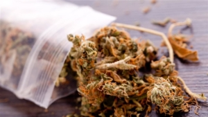 mylar bags for weed takeaway