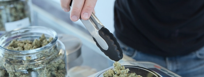 cannabis concentrate features image